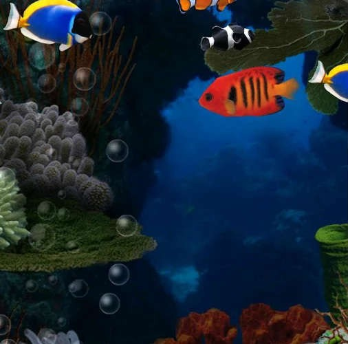 Aquarium Live Wallpaper - Bilde 04